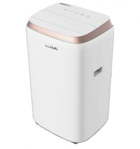 Lloyd 1 Ton Portable AC